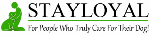 stay-loyal